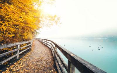 Social Media Guide to Fall: Pumpkins, Pinterest and PSLs